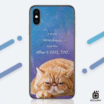 刁膜DiaoMore萌寵物語加菲貓手機包膜 1